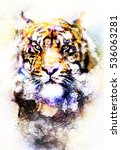 magical space tiger  multicolor ... | Shutterstock . vector #536063281
