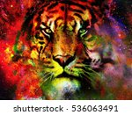 Magical Space Tiger  Multicolo...