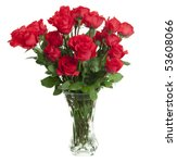 Two Dozen Red Roses Isolated On ...