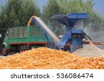 Corn Plants Corn Mill