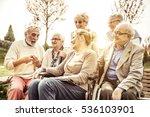 seniors spending time at the...   Shutterstock . vector #536103901