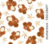 vector hibiscus flowers and... | Shutterstock .eps vector #536118697