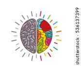 human brain with two cerebral...   Shutterstock .eps vector #536137399