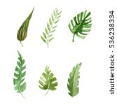 tropical leaves set watercolor...   Shutterstock . vector #536238334