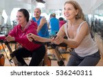 satisfied older people do... | Shutterstock . vector #536240311