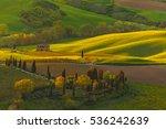 Iconic Landscape. Tuscany  ...
