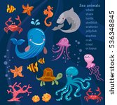 sea animals cute collection... | Shutterstock .eps vector #536348845