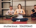 group of people making yoga... | Shutterstock . vector #536390665