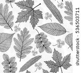 seamless pattern with leaf... | Shutterstock .eps vector #536503711