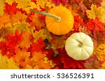acorns  pumpkins  and colorful... | Shutterstock . vector #536526391