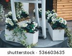 beautiful flowers in a pot | Shutterstock . vector #536603635