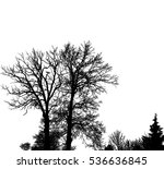 realistic trees silhouette ... | Shutterstock .eps vector #536636845