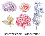set with flowers. rose. lily....   Shutterstock . vector #536689864