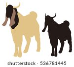 goat silhouette isolated | Shutterstock .eps vector #536781445