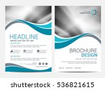 brochure template flyer... | Shutterstock .eps vector #536821615