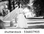 bride with vail standing in the ... | Shutterstock . vector #536837905
