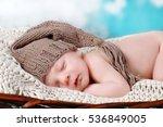 newborn baby | Shutterstock . vector #536849005