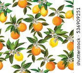 citrus seamless vector pattern