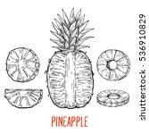 pineapple fruit set  hand drawn ...   Shutterstock .eps vector #536910829