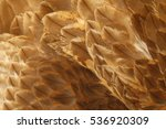 eagle feathers  | Shutterstock . vector #536920309