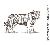 a realistic image of a tiger.... | Shutterstock .eps vector #536983414