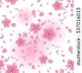 graphic sakura flowers.... | Shutterstock .eps vector #537016015
