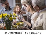 three generation family... | Shutterstock . vector #537101149