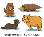 semiaquatic animals cartoon | Shutterstock .eps vector #537144301