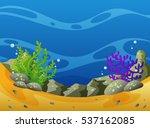 underwater scene with coral... | Shutterstock .eps vector #537162085
