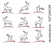 deer set. vector | Shutterstock .eps vector #537269239