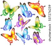 color butterflies isolated on a ... | Shutterstock . vector #537276259
