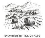 vector hand drawn village... | Shutterstock .eps vector #537297199