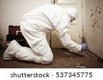 criminologist technician...   Shutterstock . vector #537345775