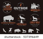 wild animal badges set and... | Shutterstock .eps vector #537396649