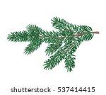 vector illustration of fir tree ... | Shutterstock .eps vector #537414415