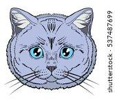 british cat head hand draw... | Shutterstock .eps vector #537487699