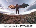 wings of flying aviator   3d... | Shutterstock . vector #537541837