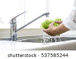 wash the vegetables in the... | Shutterstock . vector #537585244