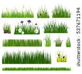 grass vector illustration. | Shutterstock .eps vector #537671194