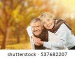 date. | Shutterstock . vector #537682207