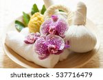 a tray of herbal compress ...   Shutterstock . vector #537716479