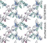 watercolor hand drawn seamless... | Shutterstock . vector #537839581