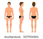 vector illustration of three... | Shutterstock .eps vector #537954301