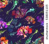 poppy watercolor seamless...   Shutterstock . vector #538051105