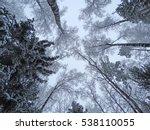 winter forest landscape on a... | Shutterstock . vector #538110055