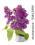 the branch of a purple lilac... | Shutterstock . vector #53812900