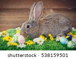 easter bunny on a meadow with... | Shutterstock . vector #538159501