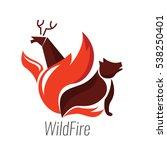 the danger of wildfire. wild... | Shutterstock .eps vector #538250401