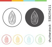 vector set of almond icons in... | Shutterstock .eps vector #538254211