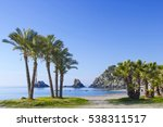 palm trees on a beach in... | Shutterstock . vector #538311517